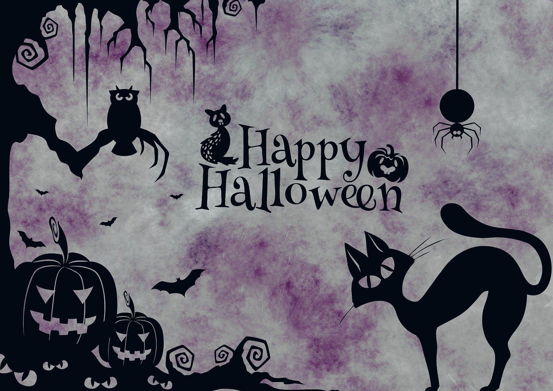 Beware of Halloween: Avoid These Frightful Cat Nightmares!