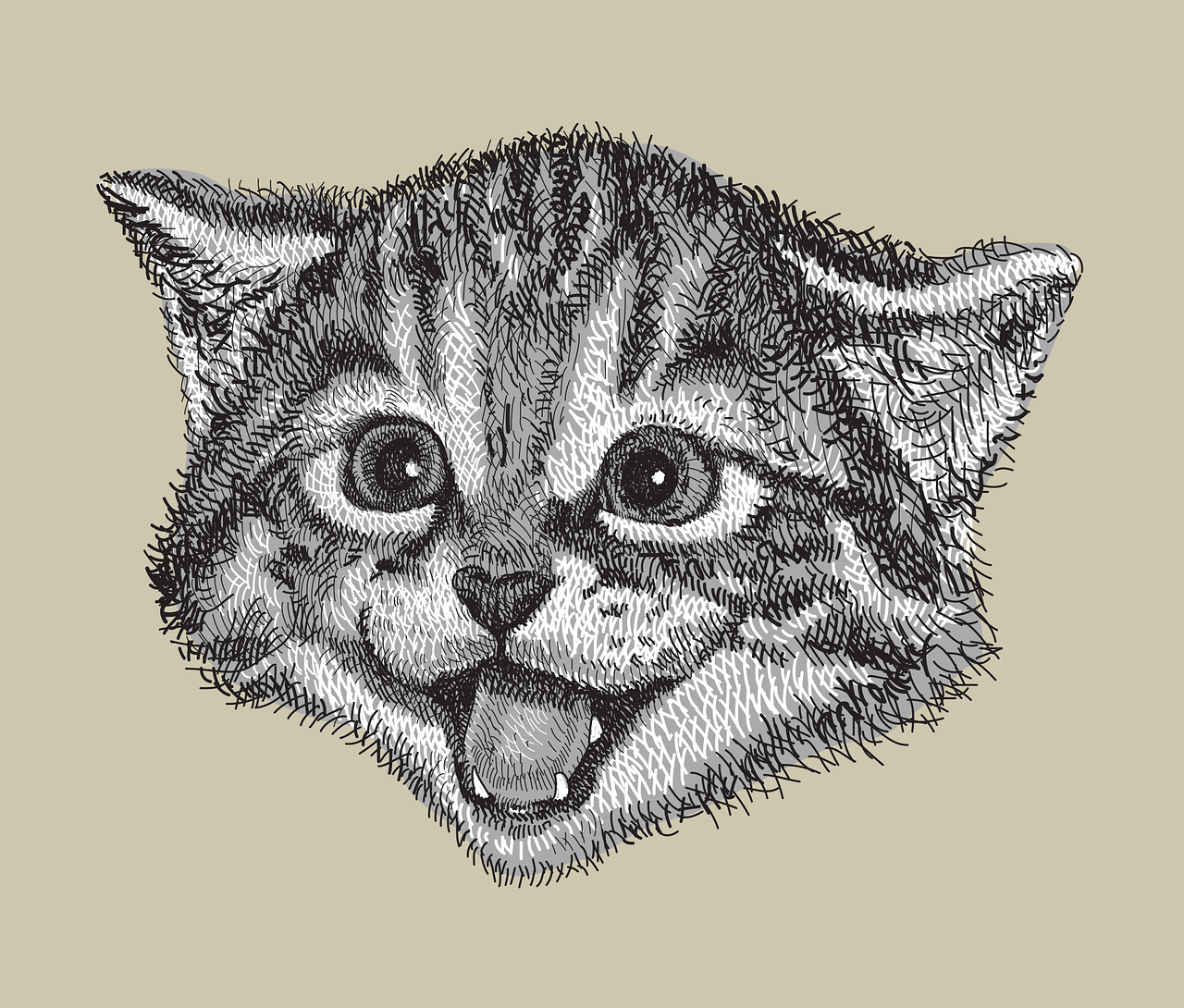 Is Your Cat Really Happy?