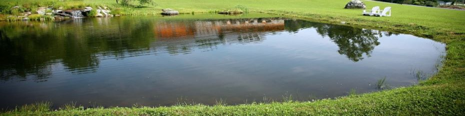 shallow-pond-2.jpg