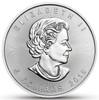 """Four Seasons"" Maple Leaf Series 1 Oz Silver Coin Canada 2019"