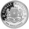 LEOPARD with cub - African Wildlife 1 oz Silver Coin 2019 Somalia