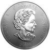 HALLOWEEN - Maple Leaf 1 oz Silver Coin Canada 2019
