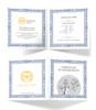 GERMANIA 1 oz Pure Silver Coin 5 Mark 2020