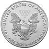 USA 1 oz Silver Coin 2020 USA