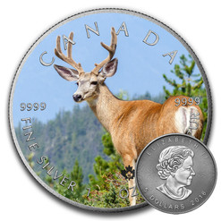 ELK - CANADIAN WILDLIFE SERIES - 2016 1 oz Pure Silver Coin - Color & Antique Finish