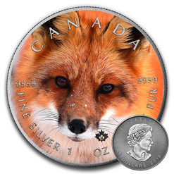 FOX - CANADIAN WILDLIFE SERIES - 2016 1 oz Pure Silver Coin - Color & Antique Finish