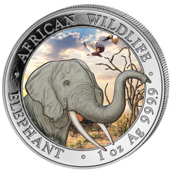 2018 ELEPHANT-African Wildlife 1 oz Color Silver Coin - 100 Shillings Somalia