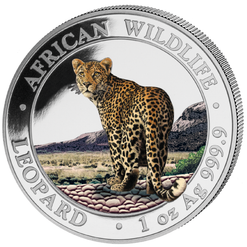 LEOPARD African Wildlife 1 oz silver color coin Somalie 2019