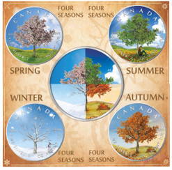 """Four Seasons"" Maple Leaf Series 1 Oz Silver Coin Canada 2019"