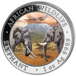 2020 ELEPHANT African wildlife 1 Oz Silver Color Coin Somalia