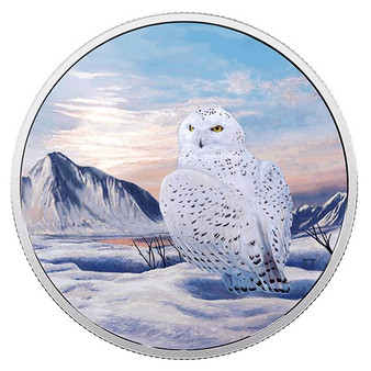 SNOWY OWL Glow Northern Lights 2 Oz Silver Coin 30$ Canada 2018