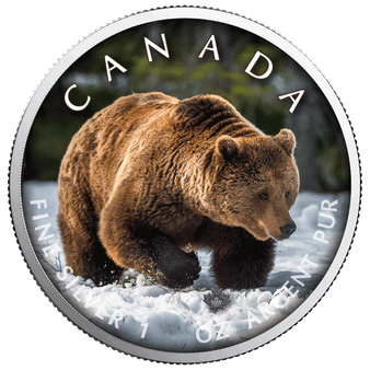 GRIZZLY BEAR MAPLE LEAF 1 Oz Silver Coin 2019