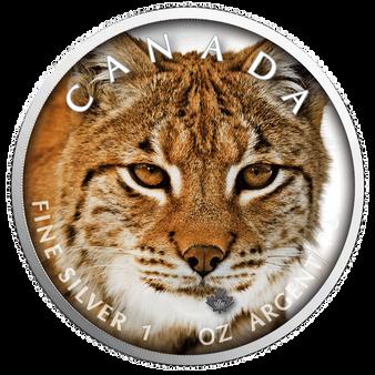 LYNX MAPLE LEAF Canada's Wildlife - 1 Oz .9999 Silver Coin 5$ 2019