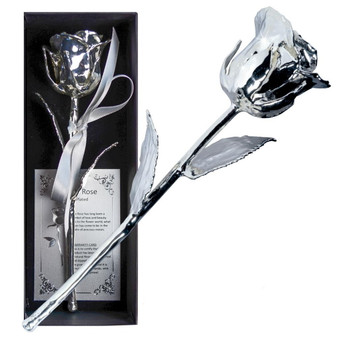 ETERNAL LOVE - Natural Rose Silver plated 16 cm - 152 g in Gift Box
