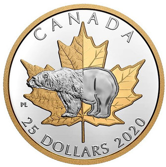 POLAR BEAR  1 oz Silver Gold-Plated Piedfort $25 Coin Canada 2020