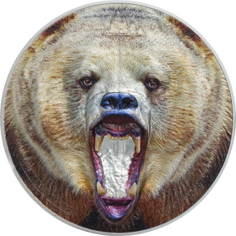 American GRIZZLY BEAR Rare Wildlife 2 Oz Silver Proof Coin Tanzania 2020