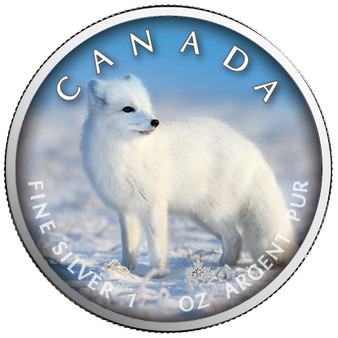 POLAR FOX in Color Maple Leaf 1 oz. Silver Coin Canada 2021