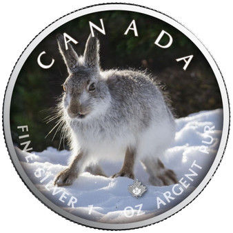 SNOW HARE Trails of Wildlife Maple Leaf 1 oz. Silver Coin 2021