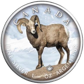 BIGHORN SHEEP Trails of Wildlife Maple Leaf 1 oz. Silver Coin 2021