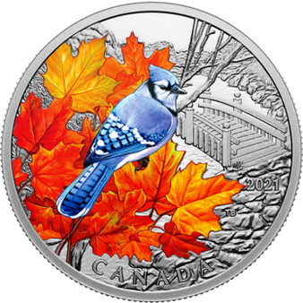 BLUE JAY Colorful Birds 1 oz. Silver Proof Coin $20 Canada 2021