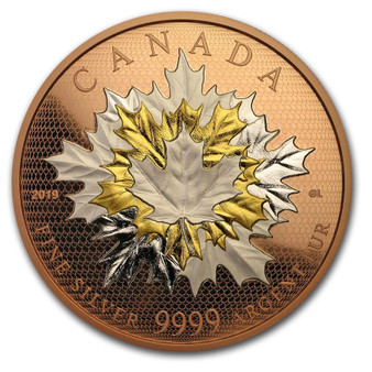 MAPLE LEAVES MOTION 5 oz Silver Proof Rose Gold Coin $50 Canada 2019