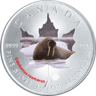 2015 Canadian Wildlife 1 oz Silver Maple Leaf - Walrus