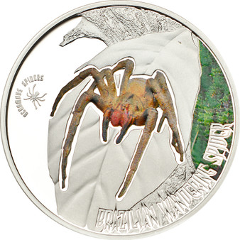 Brazilian Wandering Spider - 5$ Cook Island Silver Coin 2011