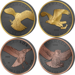 BIRDS OF PREY Set Golden Enigma 4x1 Oz Silver Coins 5$ Canada