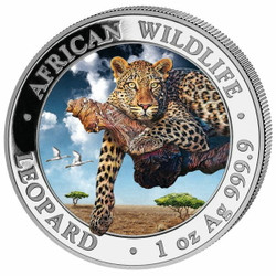 LEOPARD - African Wildlife 1 oz Silver color Coin 2020 Somalia