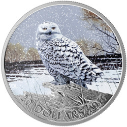 2016 $20 1 oz Fine Silver Coin - Snowy Owl