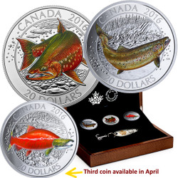 Canadian Salmonids:Atlantic Salmon  Fish 3 coins set –99.99% pure silver