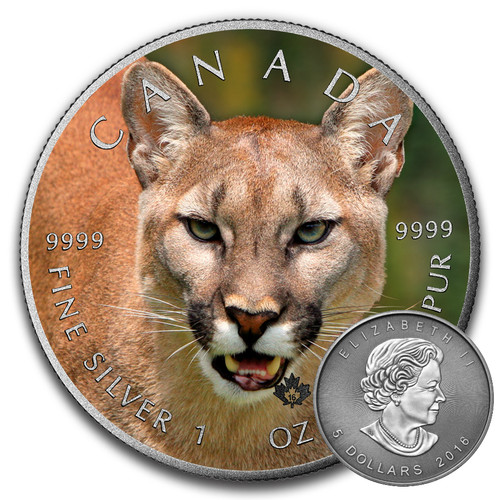 COUGAR - CANADIAN WILDLIFE SERIES - 2016 1 oz Pure Silver Coin - Color & Antique Finish