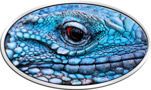 BLUE IGUANA XL 5C - Ultra Silver Coin 2$ Niue 2012