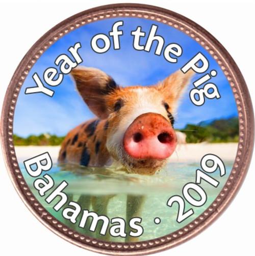 2019 Pig of Paradise Art Enamel Copper Coin 1 cent Bahamas