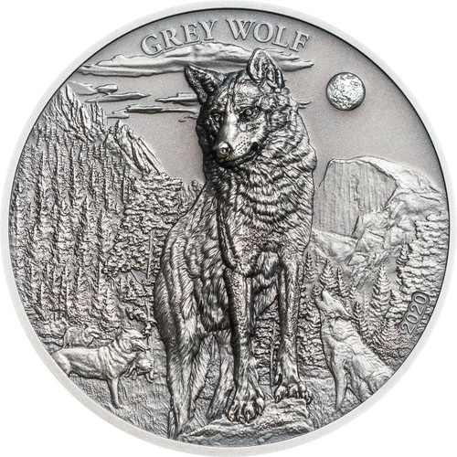 GREY WOLF 1 oz Silver Ultra high relief coin $5 Palau 2020