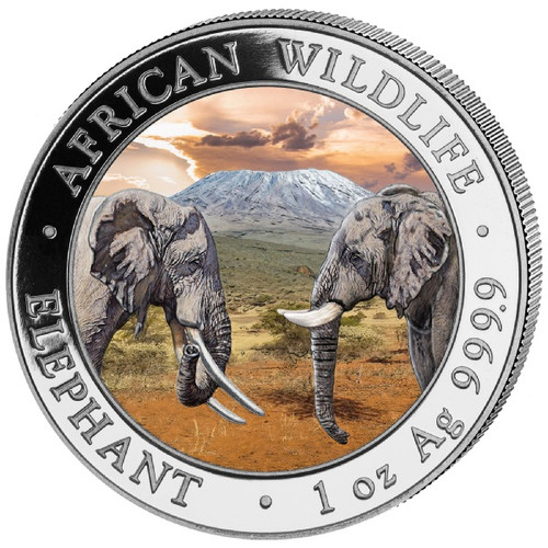 Leopard Silver Ounce 2018 Somalia 100 Shillings African Wildlife coloured Coin
