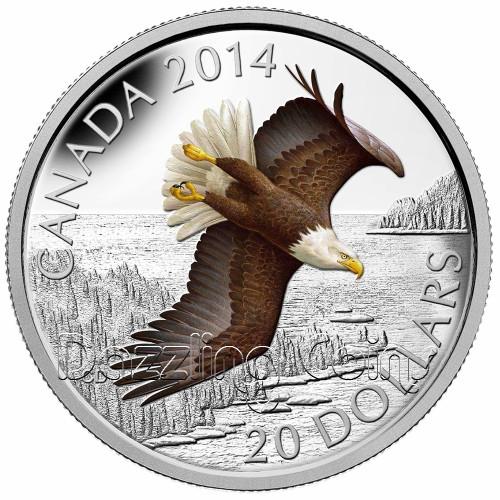 $20 1 oz .9999 Silver Color Coin - Soaring Bald Eagle Canada 2014
