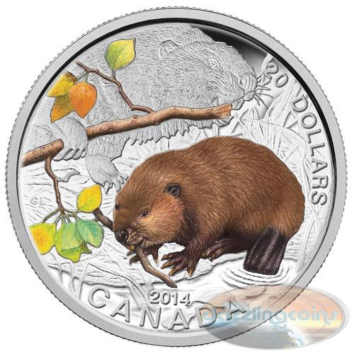 $20 1oz .9999 Silver Color Coin - Baby Beaver Canada 2014