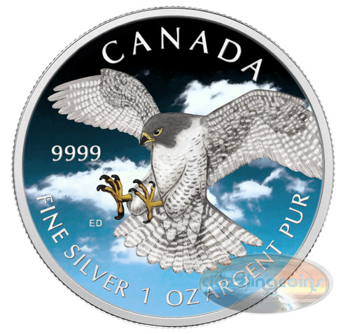 1 OZ Birds of Prey 2014 - Peregrine Falcon COLOR II Canadian Series .9999