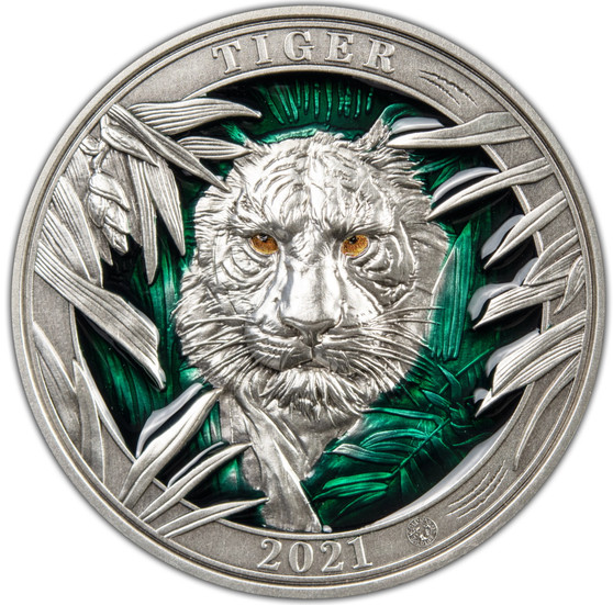 MAJESTICAL TIGER Colours of Wildlife 3 oz Silver Coin Barbados 2021