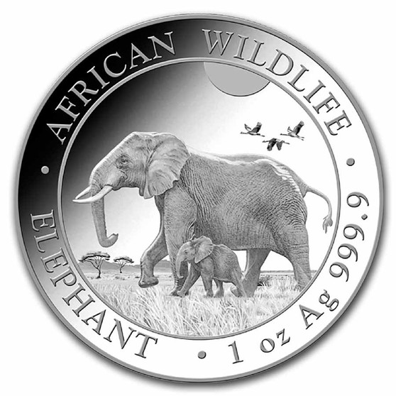 LEPHANT African Wildlife Coin 1 oz Silver Coin 2022 Somalia