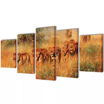Zidne Slike na Platnu Set s Printom Lavovi 100 x 50 cm