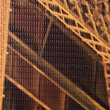 vidaXL Sklopiva sobna pregrada 160 x 170 cm sydneyski lučki most