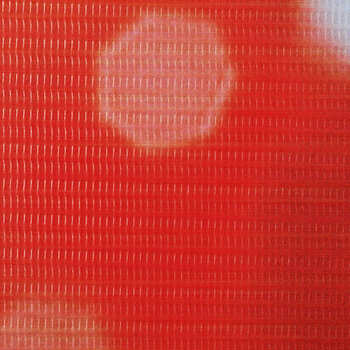 vidaXL Sklopiva sobna pregrada sa slikom crvene ruže 228 x 170 cm
