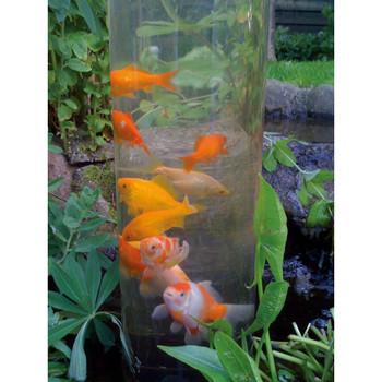 Ubbink Cijev za ribe 50 cm Akril