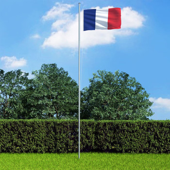 vidaXL Francuska zastava s aluminijskim stupom 6,2 m