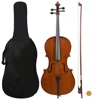vidaXL Set violončela s torbom i gudalom od prirodne dlake 4/4