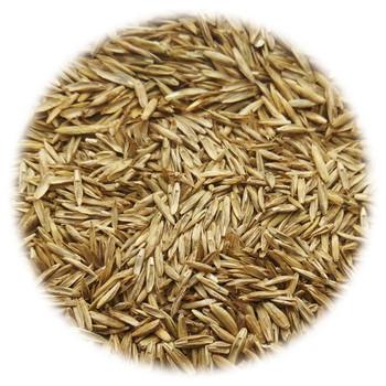 vidaXL Sjeme trave za suha i vruća područja 30 kg