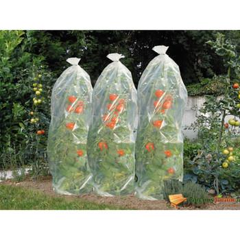 Nature pokrov za uzgoj rajčica 1500 x 50 cm