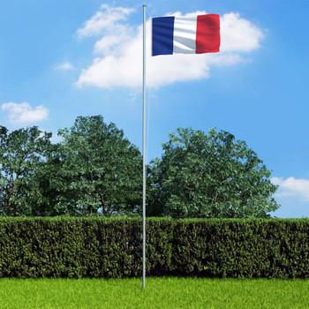vidaXL Francuska zastava s aluminijskim stupom 4 m